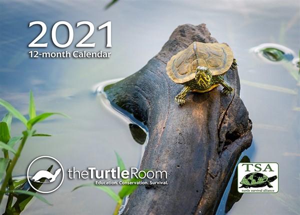 2021 theTurtleRoom Calendar