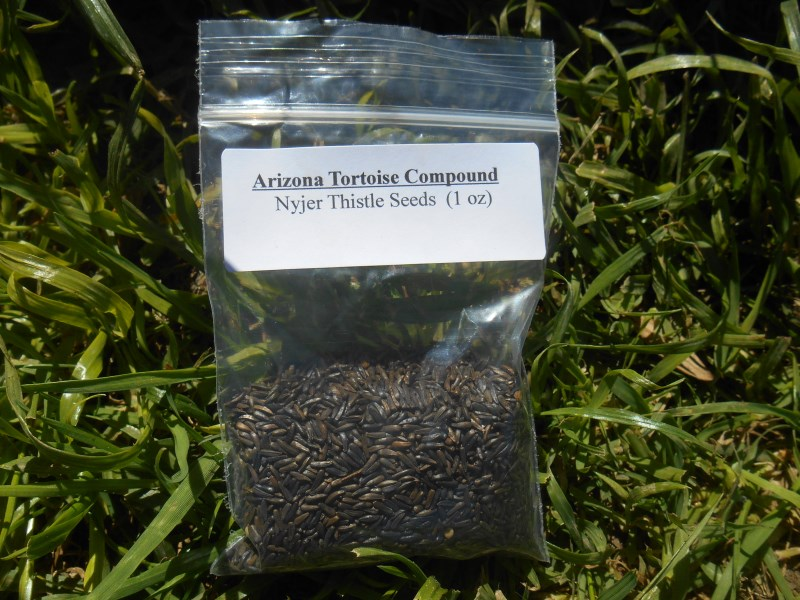 Nyjer Thistle Seeds