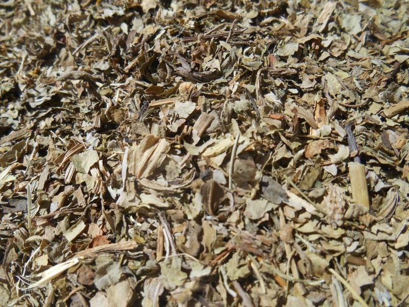 Dried Echinacea Leaf