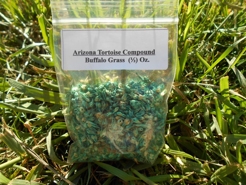 Buffalo Grass Seeds
