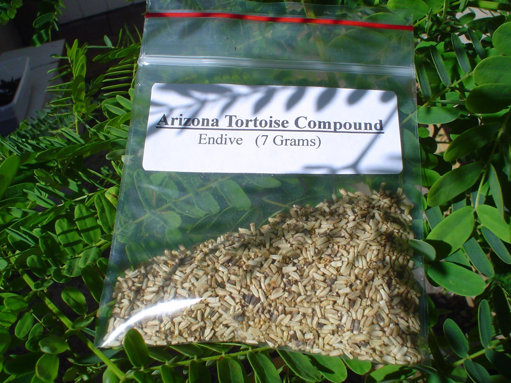 Endive Seed Packet